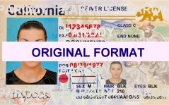 california driver license, buy fake id online, scannable california id
